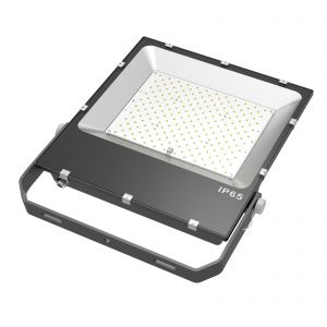 Proyector LightED Alta Potencia