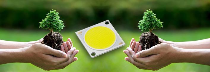 Iluminación LED y plantas